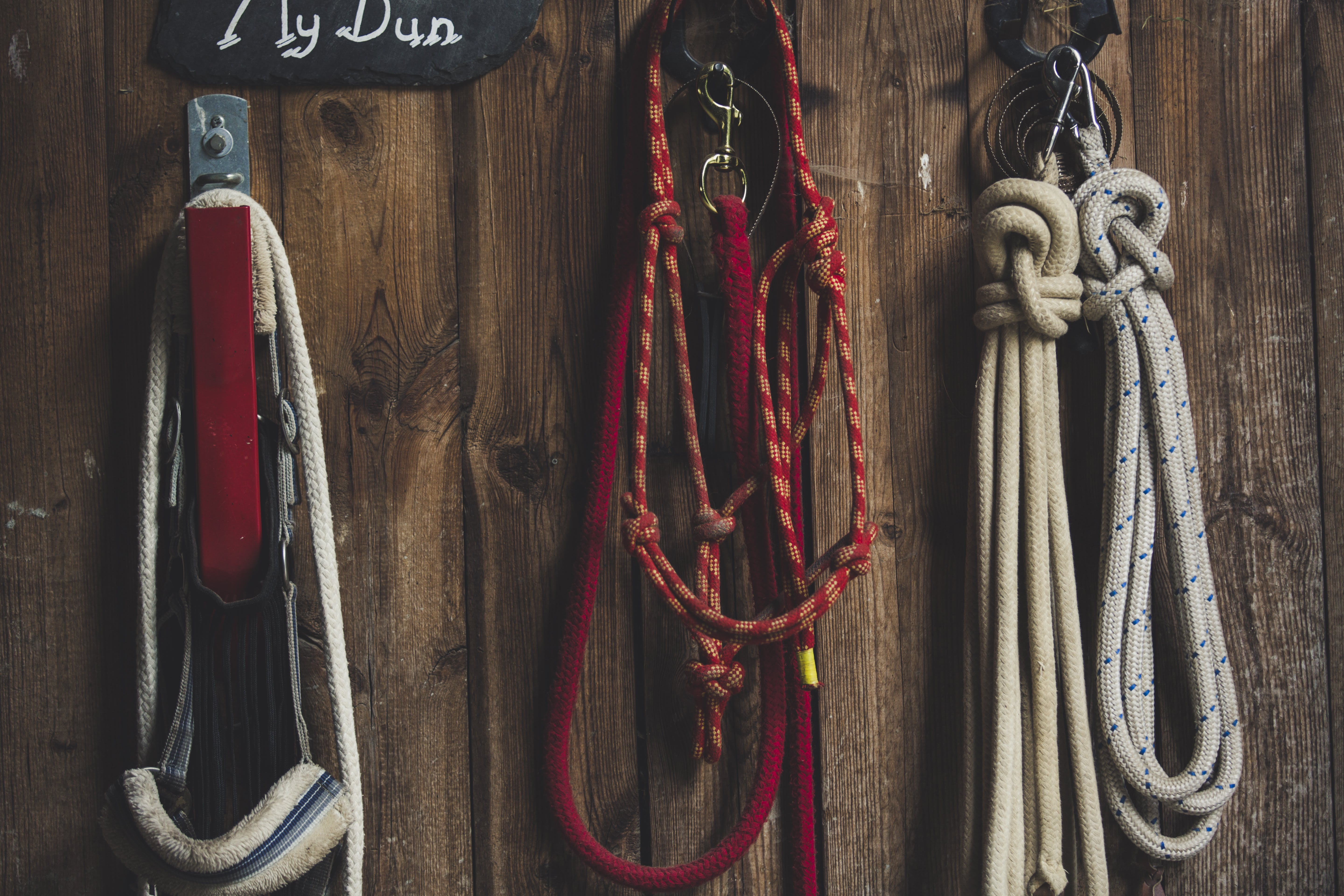 Four Ropes Hanged on Brown Board