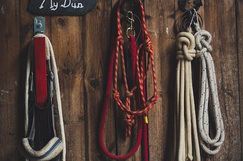 Foto d'estoc gratuïta de cable, cordes, de fusta, equips