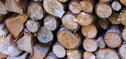 Close-up Photo of Brown Firewoods