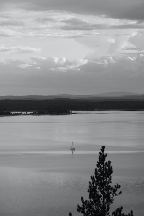 Free stock photo of beach, black and white, dawn