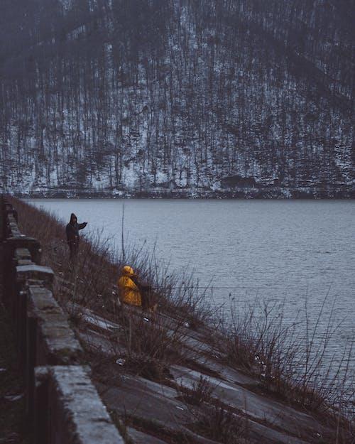Foto d'estoc gratuïta de aigua, constipat, neu