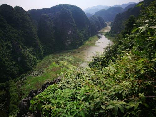 iguazu瀑布4k, la jolla 4k, torrey pines 4k, 世界上最好的自然4k 的 免費圖庫相片