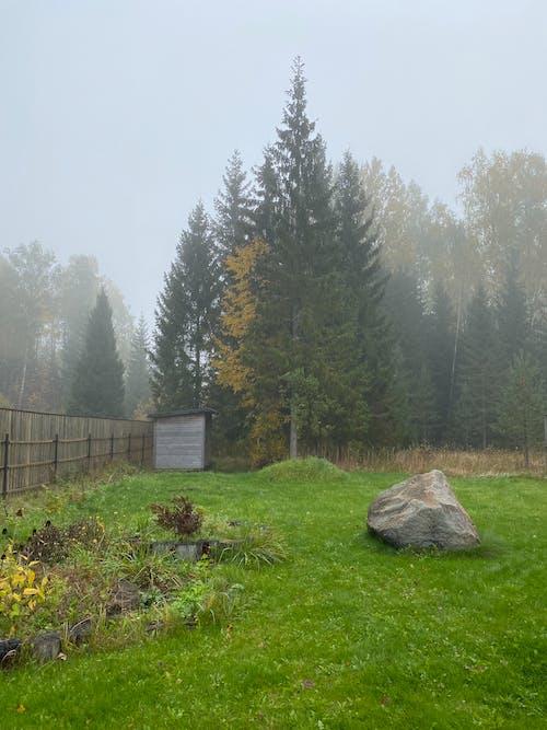 フェンス, 屋外, 曇りの無料の写真素材