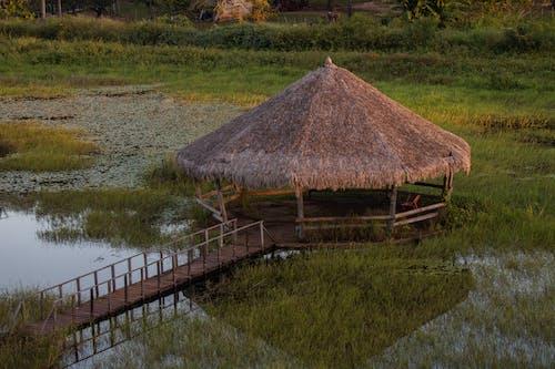 A Nipa Hut on a Grassy Field