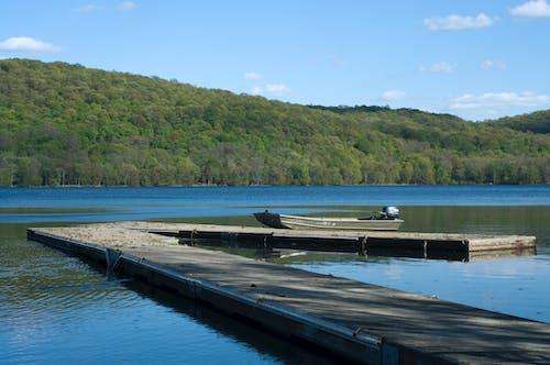 Бесплатное стоковое фото с вода, голубой, деревья, зеленый