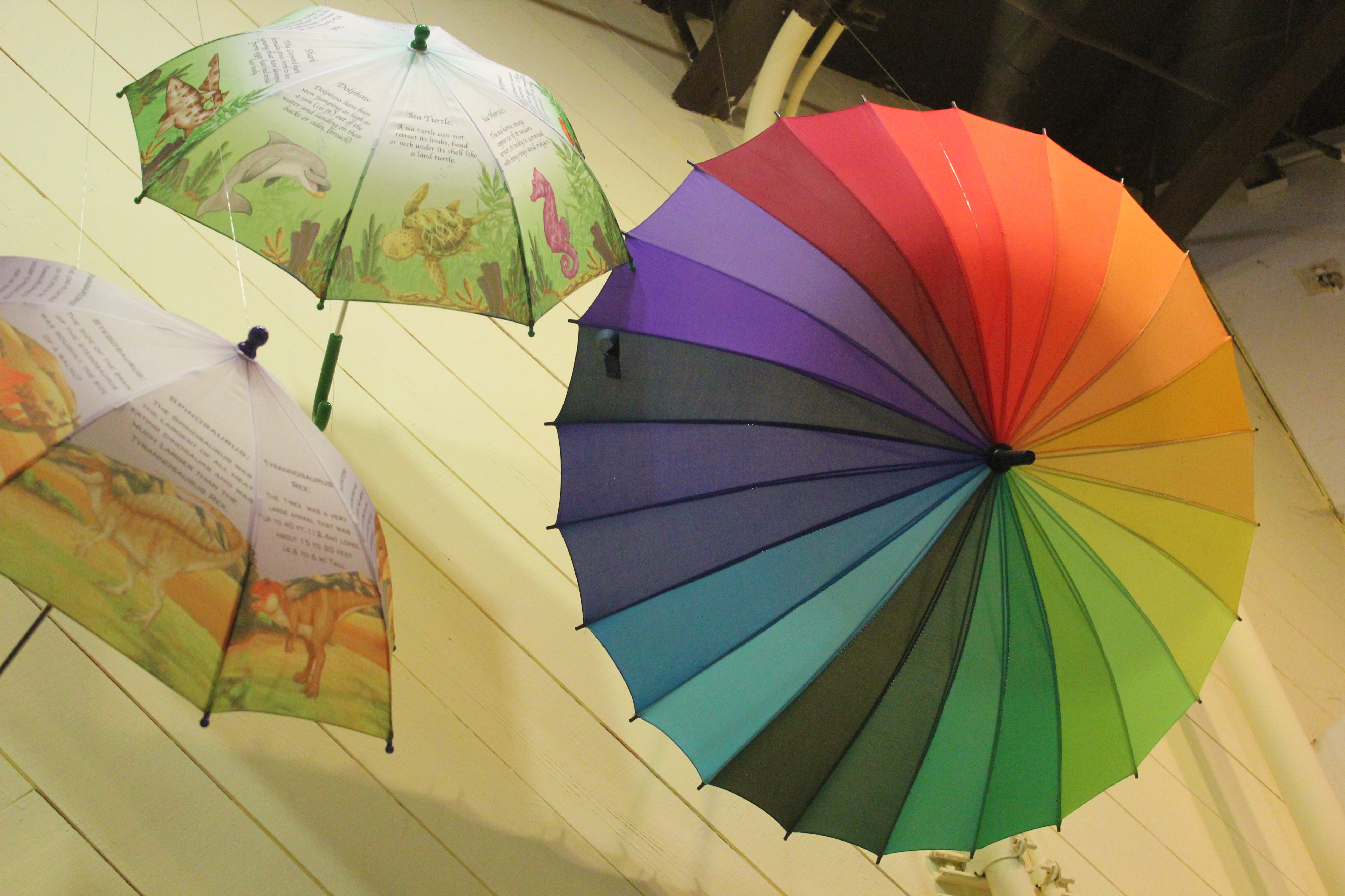 Free stock photo of colorful umbrellas
