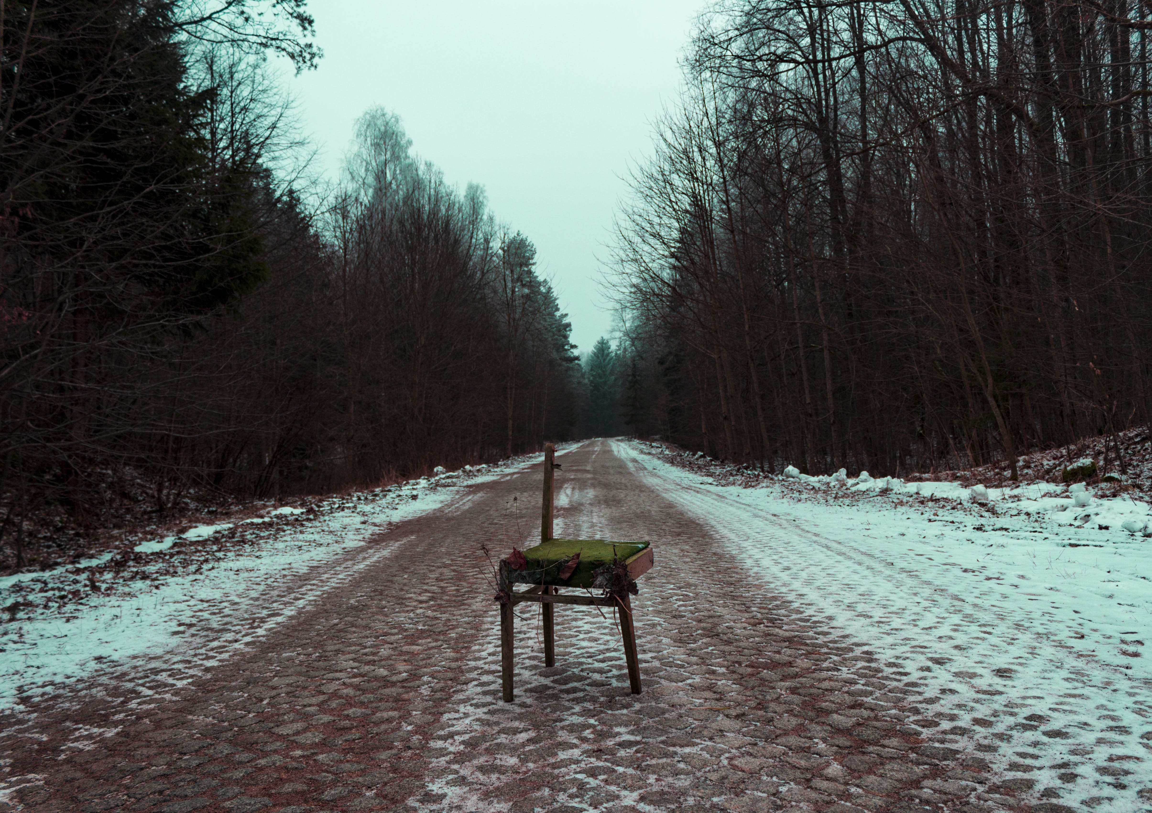 Photography of broken brown chair in the Middle of Road Surrounded by Trees