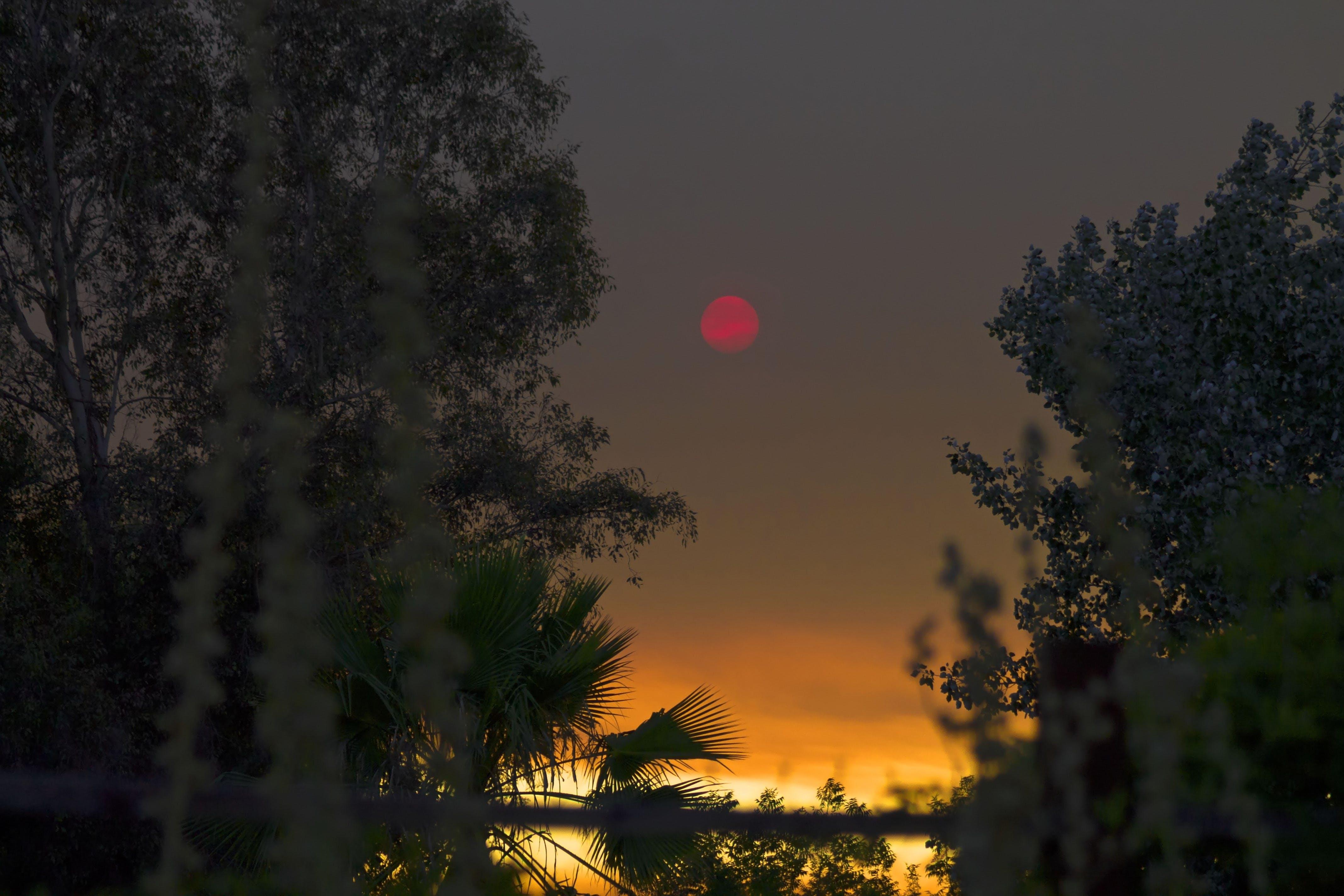 Gratis arkivbilde med landskap, rød måne