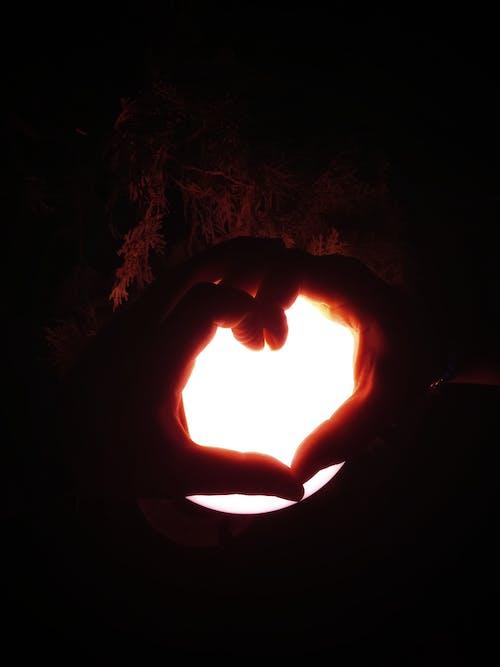 Ingyenes stockfotó 2 kéz szeret, kézi szeretet, szerelem jele, szeretet kifejezni témában