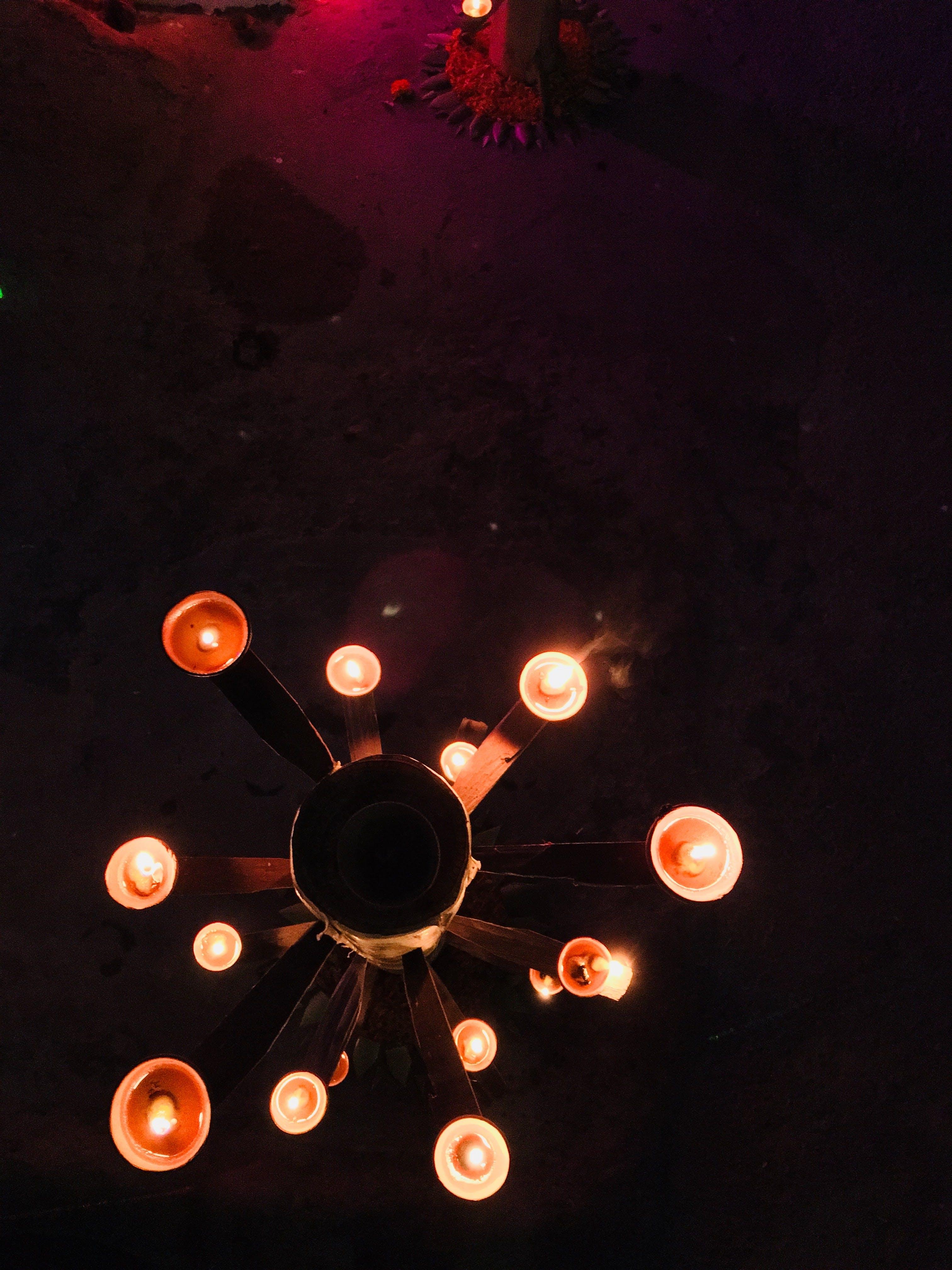 Free stock photo of Agra, festival, india, uttar pradesh