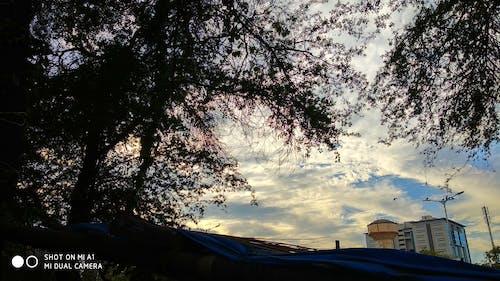 Δωρεάν στοκ φωτογραφιών με βραδινός ουρανός