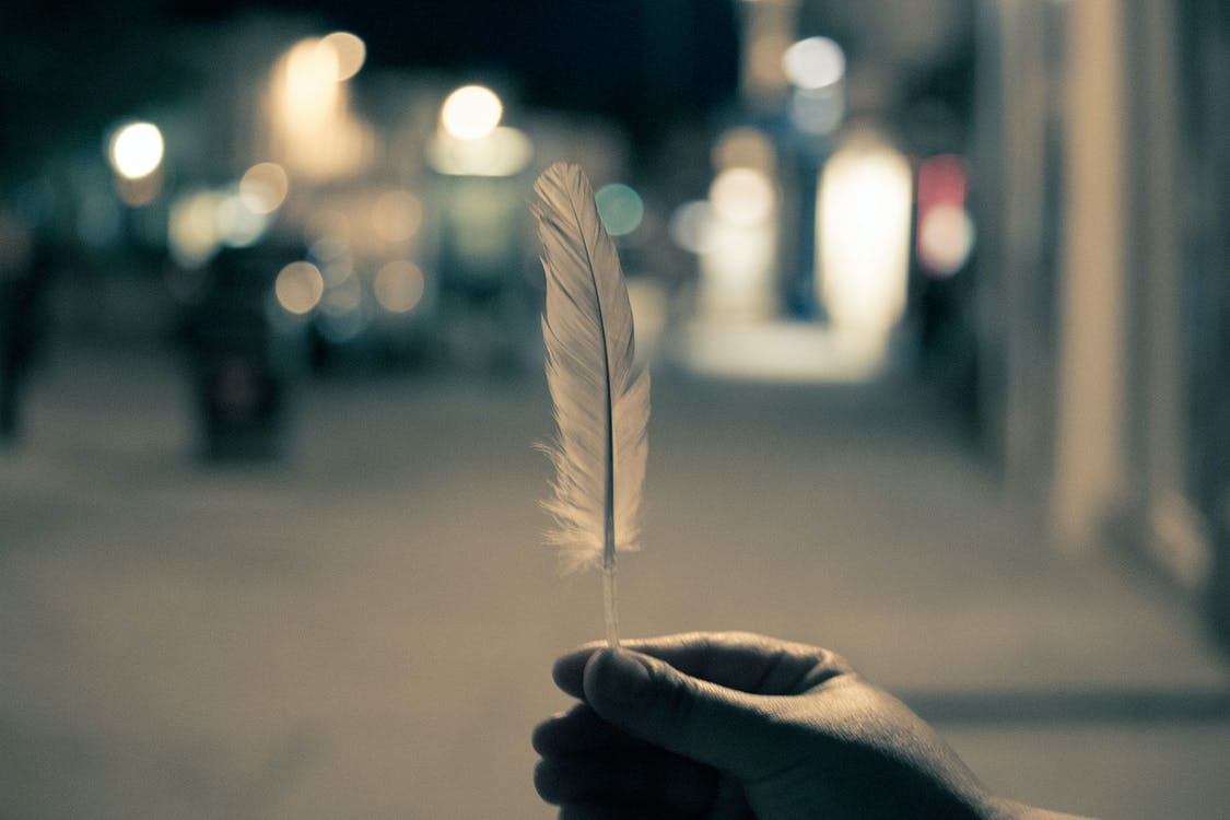 Selective Focus Photography of Person Holding Feather