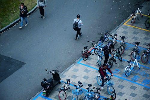 Immagine gratuita di alunno, scuola, segnaletica stradale, strada