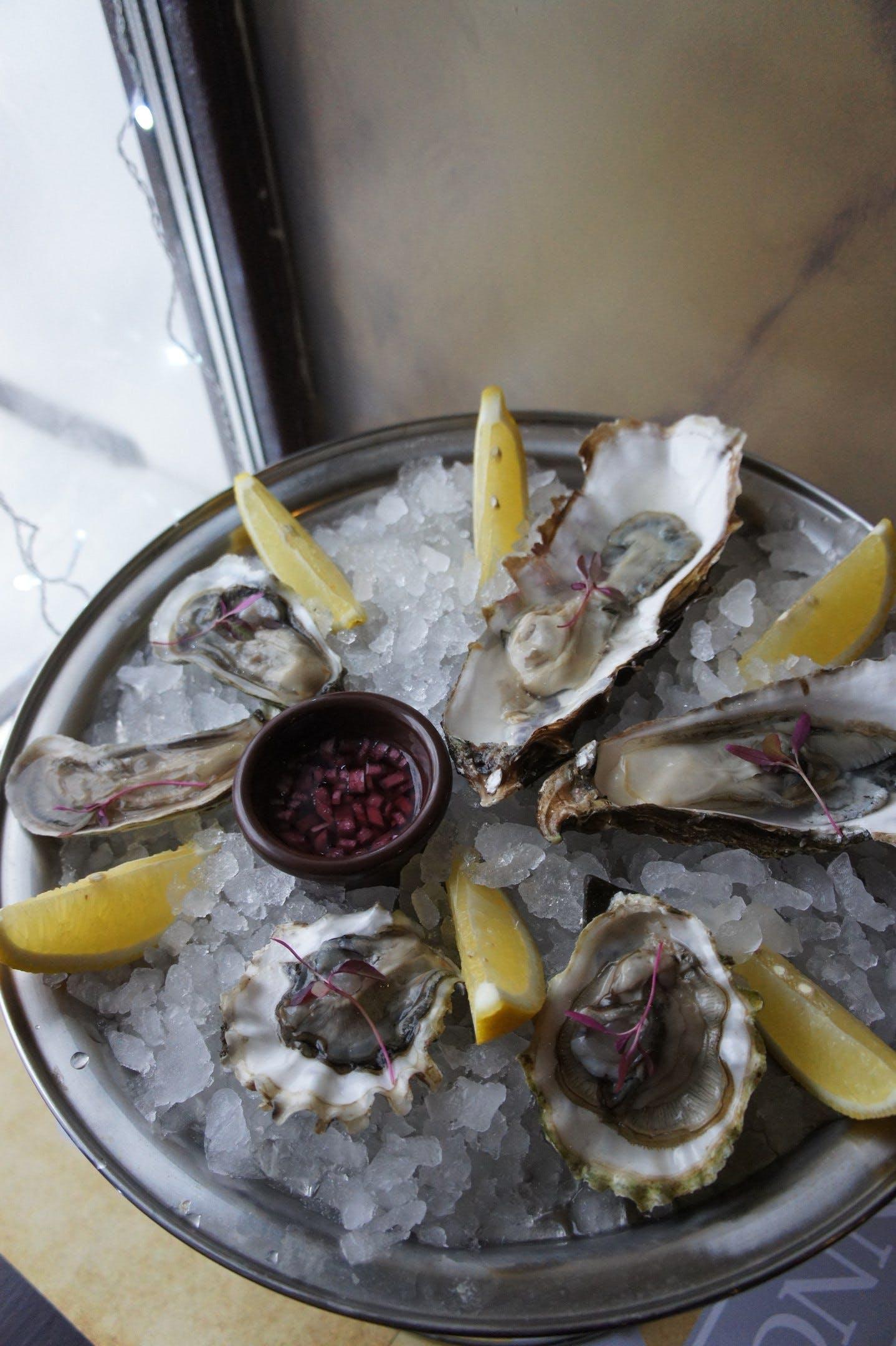 Free stock photo of lemon, oysters, seafood, seashells