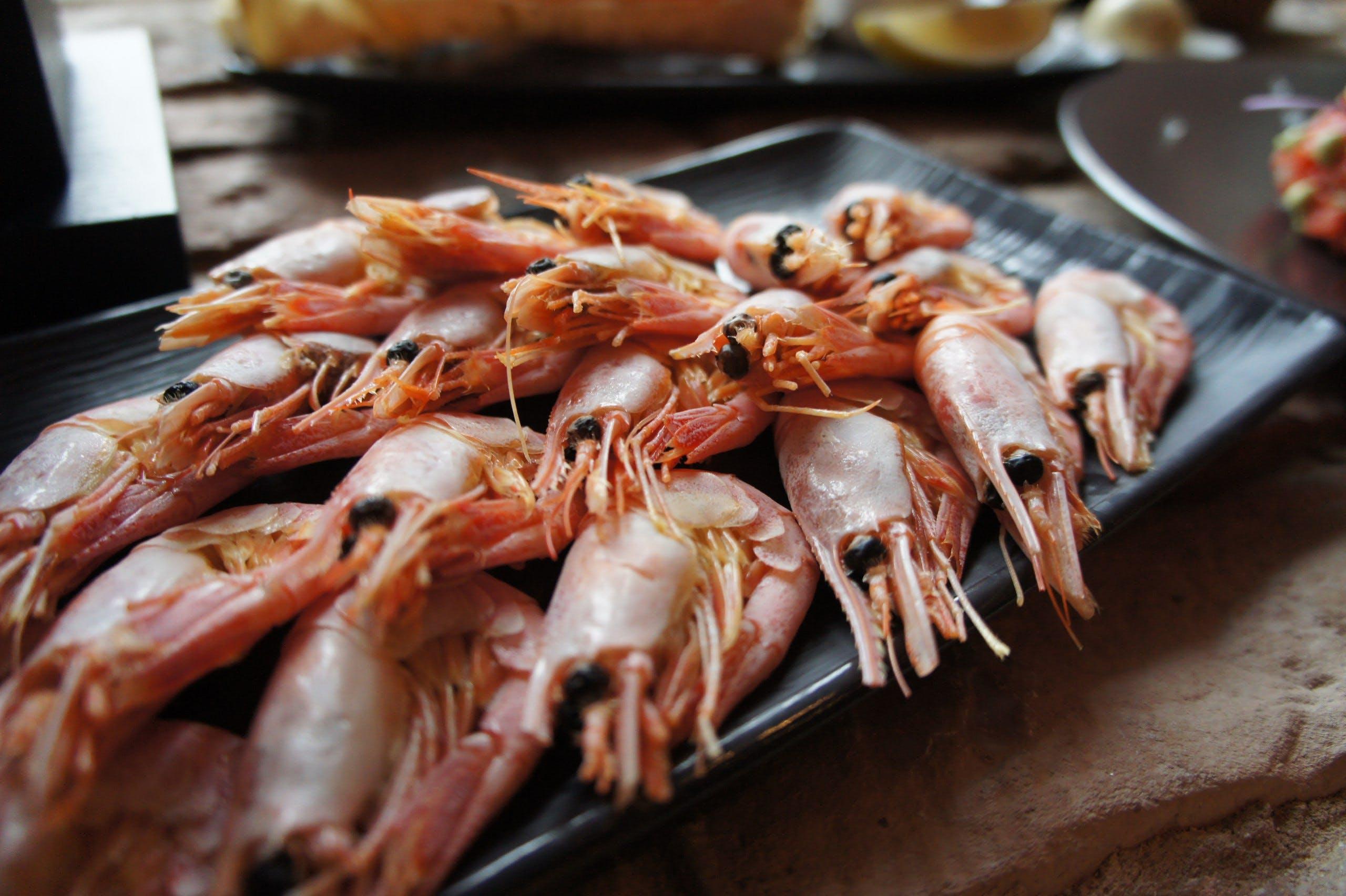 Free stock photo of food, foodphoto, prawn, Prawns
