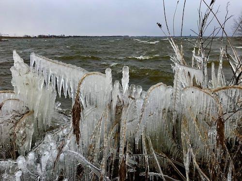 Ilmainen kuvapankkikuva tunnisteilla flunssa, jää, talvi, vesi