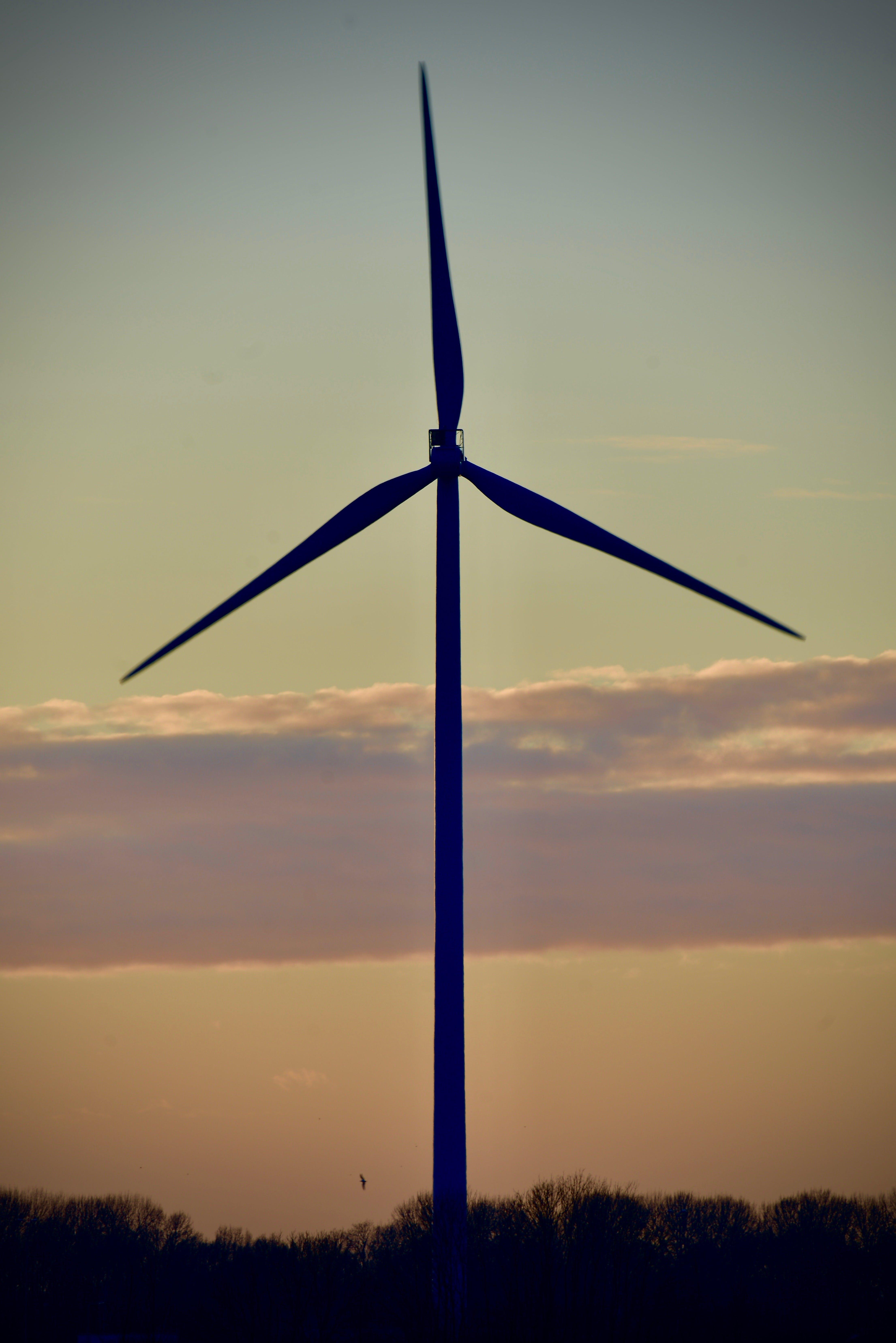 Безкоштовне стокове фото на тему «відновлювана енергія, вітрова енергія, Вітряк»