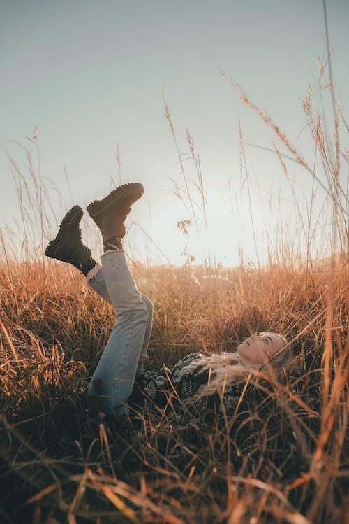 Photos gratuites de aube, automne, clairière