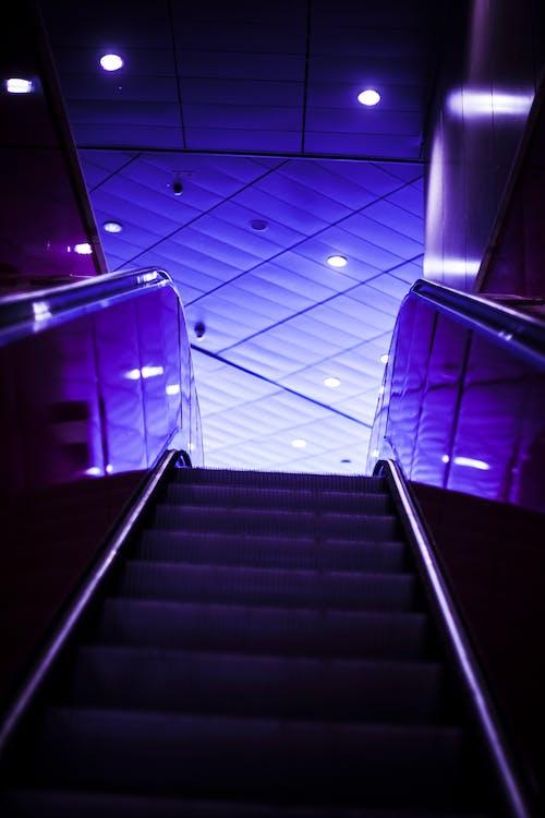 Kostenloses Stock Foto zu architekturdesign, design, drinnen, dunkel