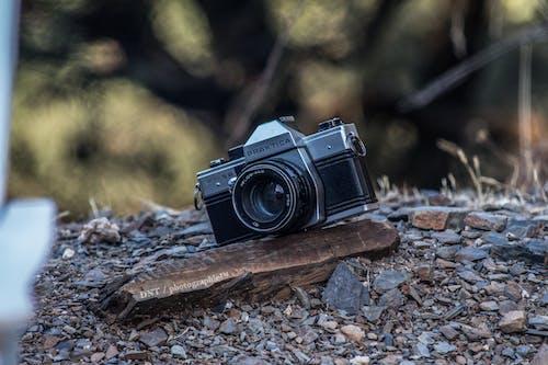 Free stock photo of photograph