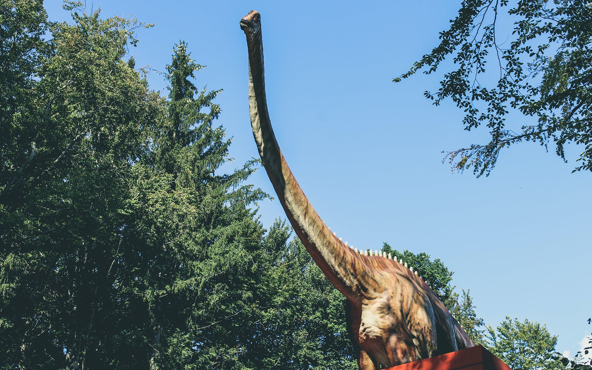 Gratis lagerfoto af dinosaurus