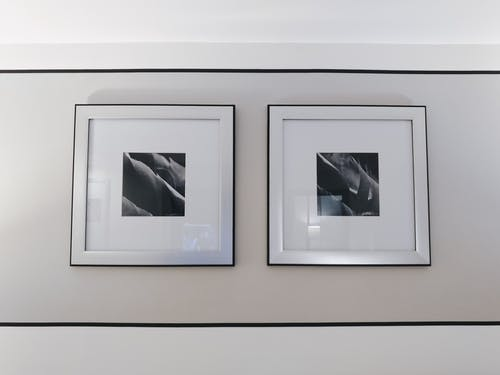 Two Gray and Black Flower Paintings on Wall Inside the Room