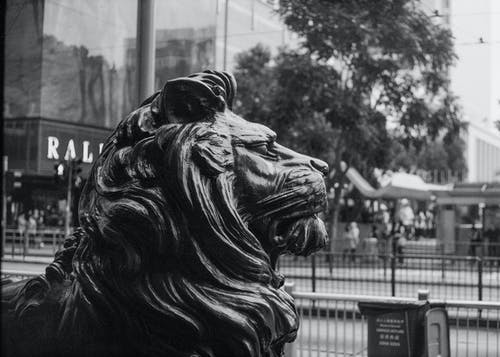 Grayscale Photo of Lion Statue