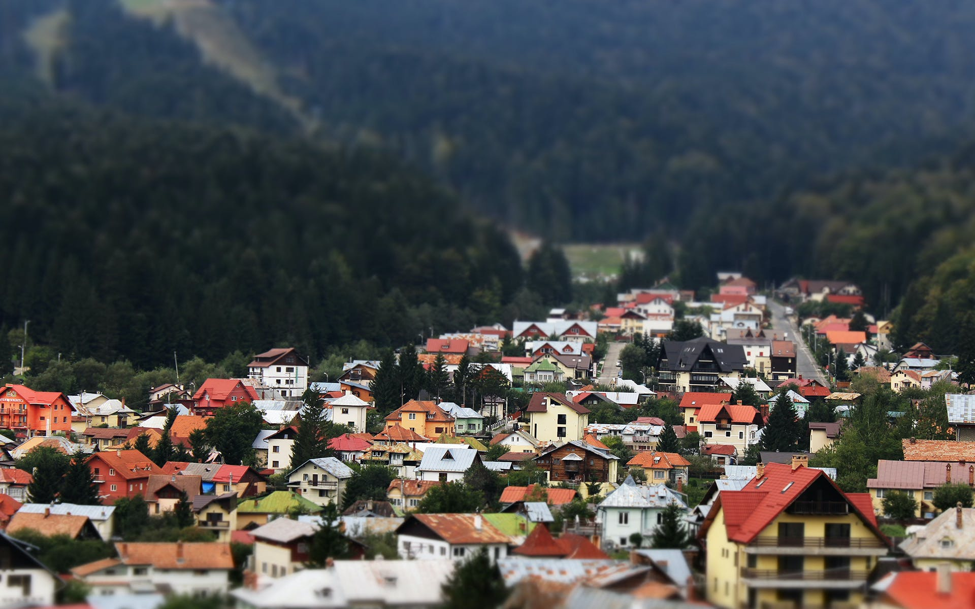 valley, village