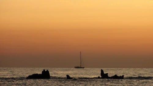 Foto profissional grátis de amancer, corse, mar, playa