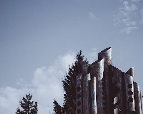 Foto d'estoc gratuïta de arbre, arquitectura, art, edifici