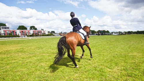Person Riding Horse at the Field during Day