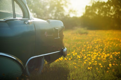 Selective Focus Photography of Vehicle on Flower Field
