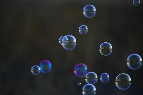 泡, 浅いフォーカス, 背景をぼかした写真の無料の写真素材