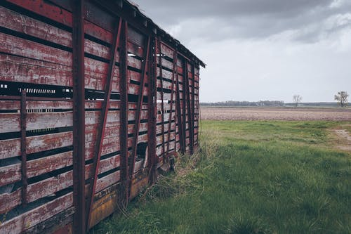 Photo of Red Wooden Shed on Green Grass Field