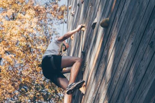 Základová fotografie zdarma na téma akce, denní světlo, dospělý, lezení