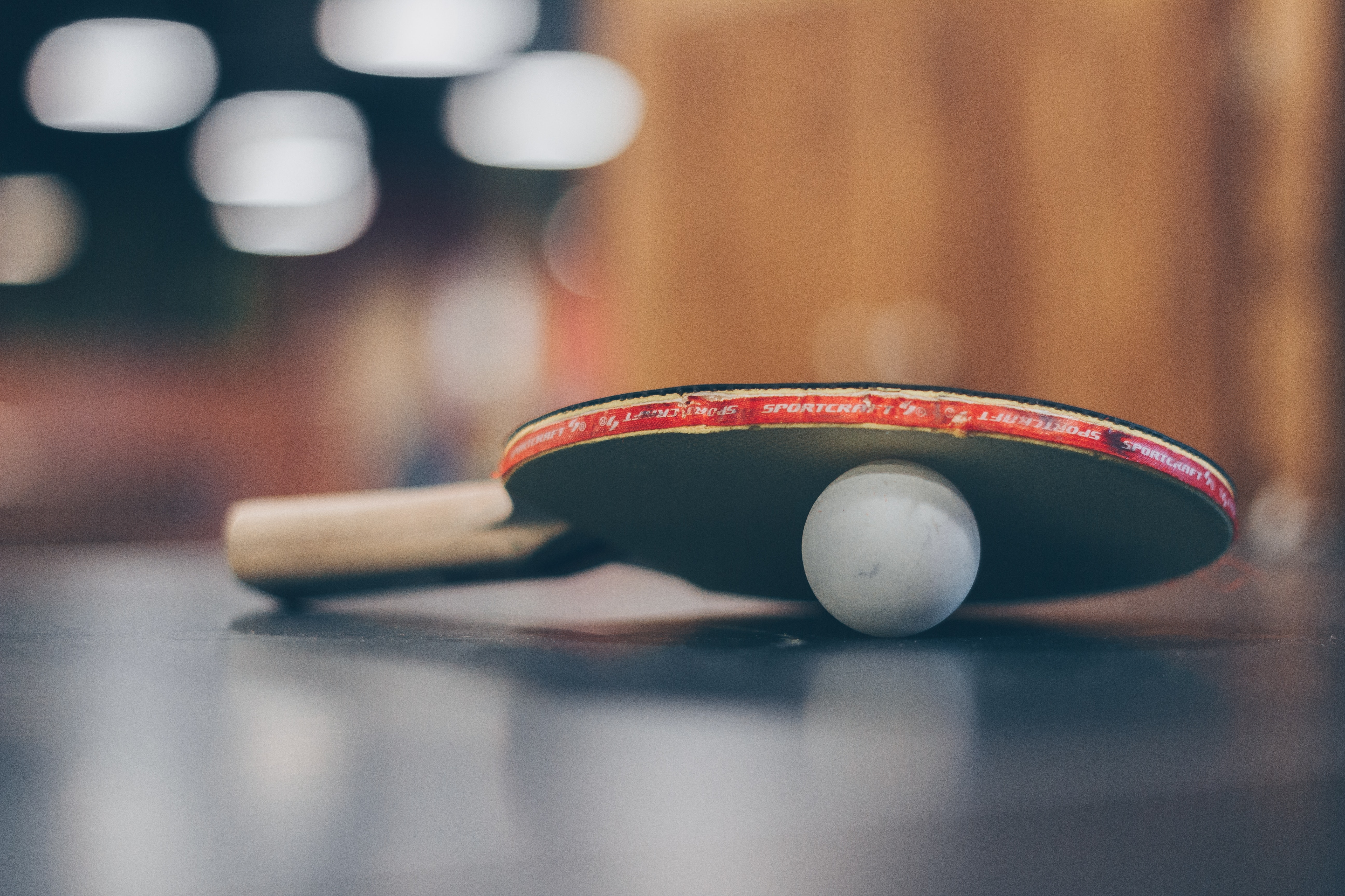 Selective Focus Photo of Table Tennis Ball and Ping-pong ...