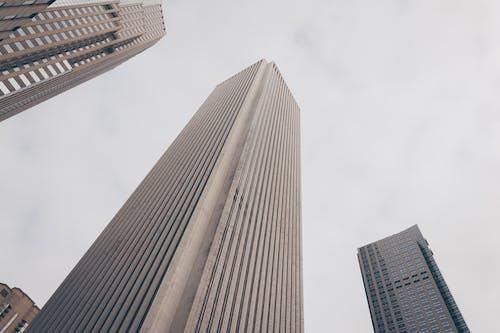 가장 높은, 건물 외관, 건축, 건축 설계의 무료 스톡 사진
