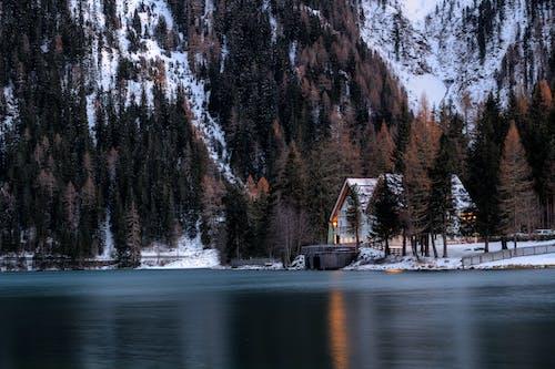 コールド, シャレー, 光, 冬の無料の写真素材