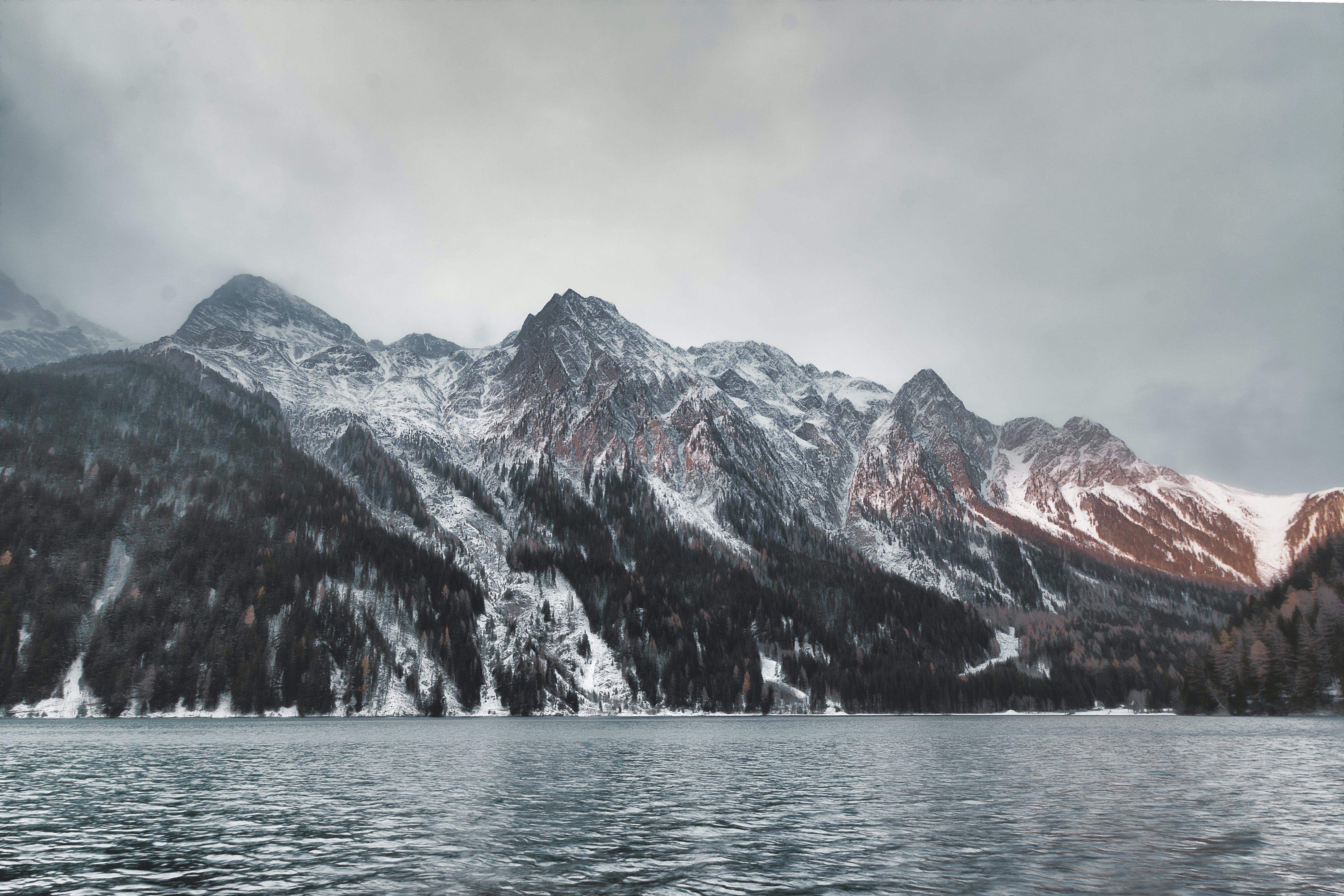 Základová fotografie zdarma na téma denní světlo, dřevo, HD tapeta, hora
