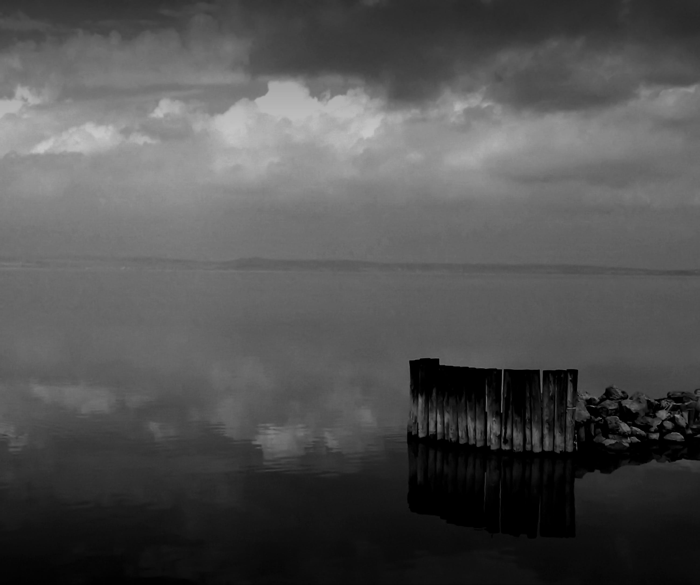 Foto stok gratis air, awan, hitam & putih, kabut