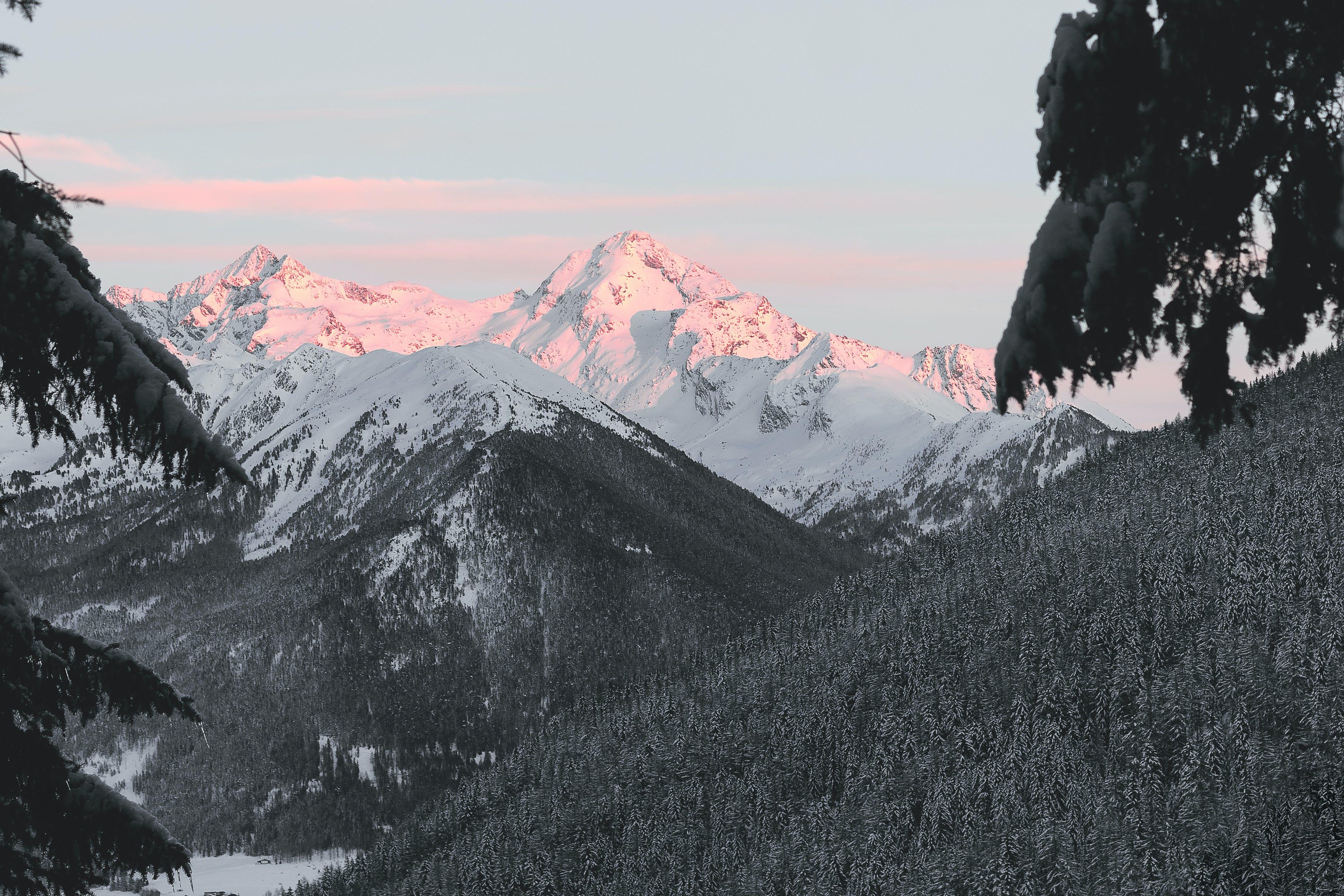 Foto stok gratis alam, beku, bukit, dingin
