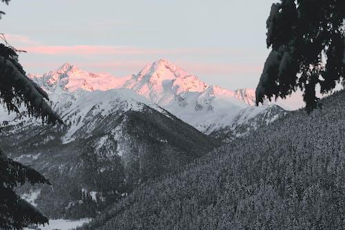 Darmowe zdjęcie z galerii z dolina, drzewa, góra, krajobraz