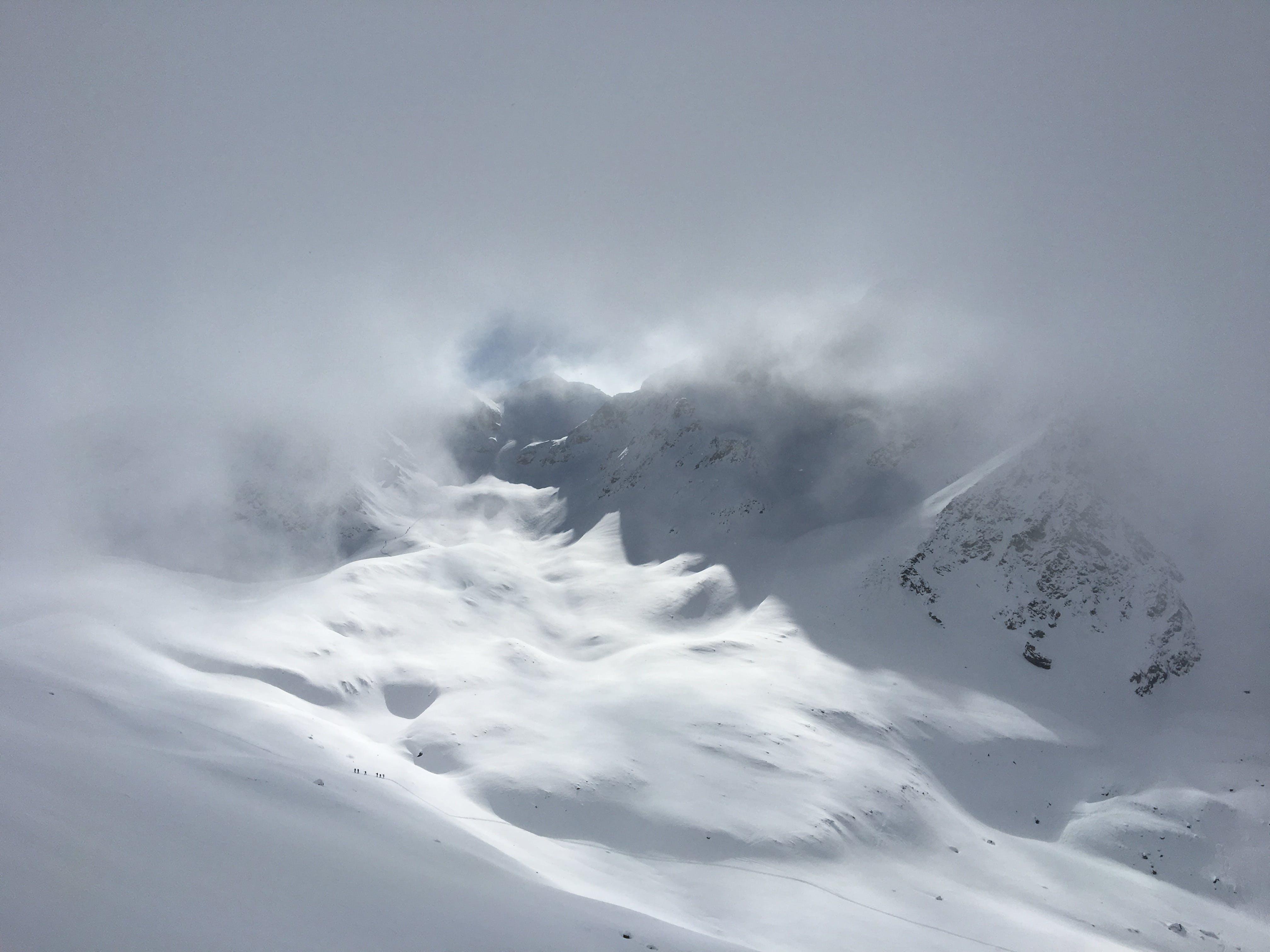 Fotos de stock gratuitas de escarcha, escénico, frío, invierno