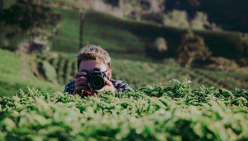 Základová fotografie zdarma na téma denní, farma, focení, fotoaparát