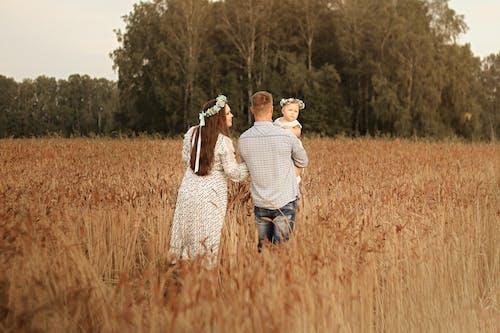 Fotobanka sbezplatnými fotkami na tému cereália, chlapec, chôdza