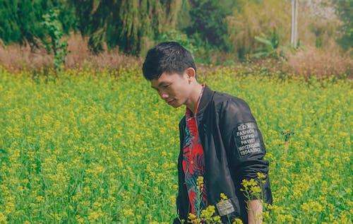 Δωρεάν στοκ φωτογραφιών με αγρόκτημα, άνδρας, ανθίζω, ανθισμένος