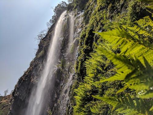 Základová fotografie zdarma na téma hora, mlha, příroda, tok