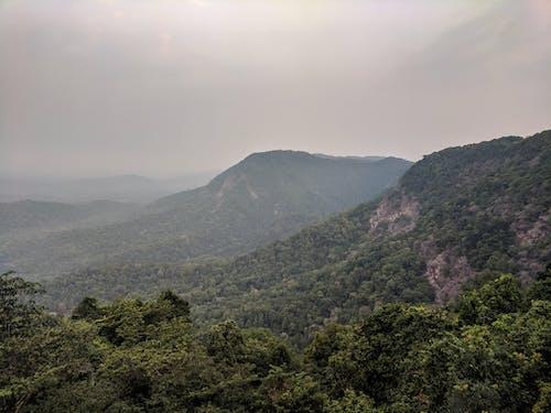 Foto profissional grátis de cênico, enevoado, luz do dia, montanha