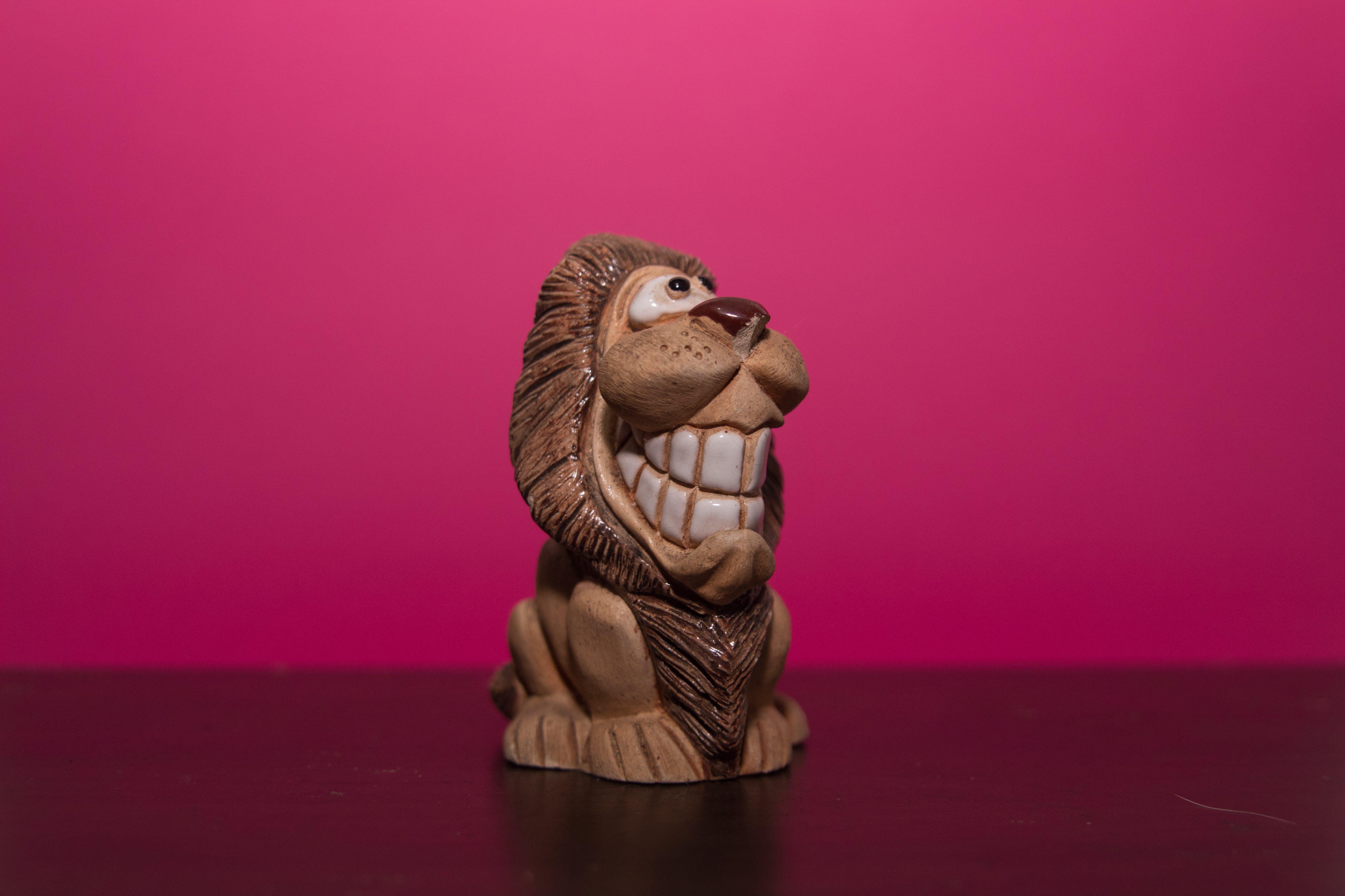 Free stock photo of amazing, animals, lion, nature