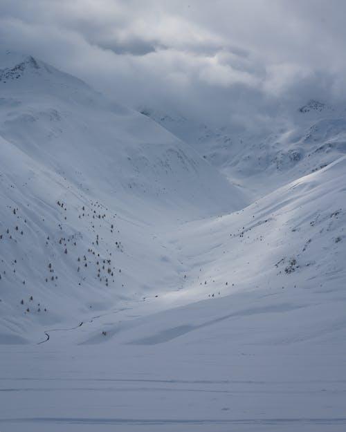Fotos de stock gratuitas de alpino, escénico, frío, invierno